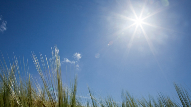 Temperature may rise slightly over country