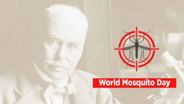 World Mosquito Day today