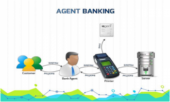 Agent banking accounts get doubled within a year
