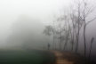 Light to moderate fog likely