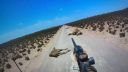 Austrilia begins camel culling, 1500 shot on 1st day