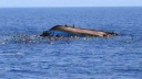115 migrants missing in boat wreck off Libya
