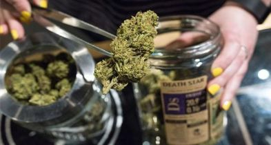 Smoking strong pot daily raises psychosis risk: study