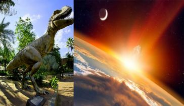 Dinosaurs were thriving before asteroid strike that wiped them ou