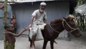 Old man from Lalmonirhat begs riding on horse