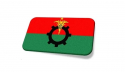 BNP on the verge of destruction due to infighting