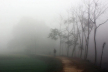 Thick fog likely in river basins, light fog likely over country