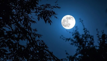 Rare 'Halloween Blue Moon' sighting in country