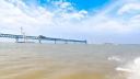 Padma Bridge's 37th span to be installed today