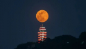 Year's first Supermoon next month