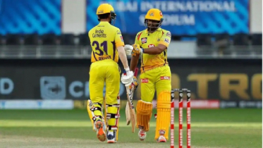 CSK beat RCB by 8 wickets