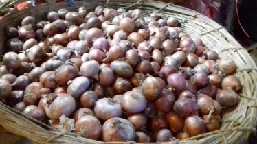 Onion likely to surpass last record; Tk 30 kg soared up overnight