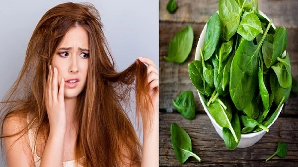 Spinach can help to overcome hair coarseness