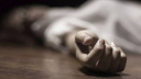 Housewife commits suicide in Pirojpur